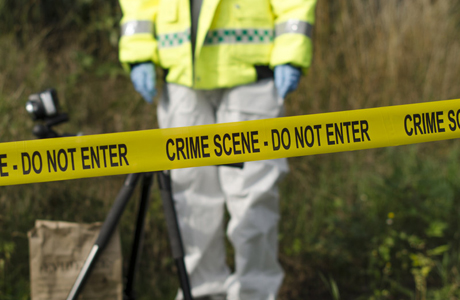 Crime scene: streamlined forensic reporting
